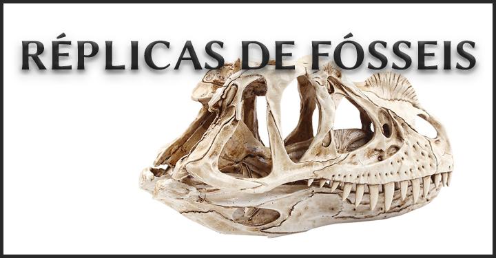 RÉPLICAS DE FÓSSEIS